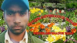Hum Fuk Deb Pakistan Ke- Devbahadur yadav