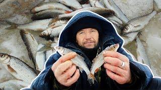ЗИМНЯЯ РЫБАЛКА 2018 | Ловля рыбы | Рыбалка на реке | Отчёты о рыбалке от 22.01.2018