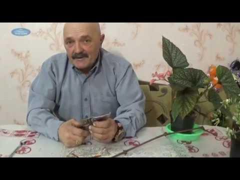 Купите секаторы felco в интернет-магазине клуб растений. Секаторы felco с доставкой в киеве и по украине.