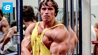Best Bodybuilder of AĮl Time | Arnold Schwarzenegger's Blueprint Training Program