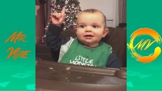 Try Not To Laugh Watching America's Funniest Home Videos | Best AFV Vine Compilation 2016