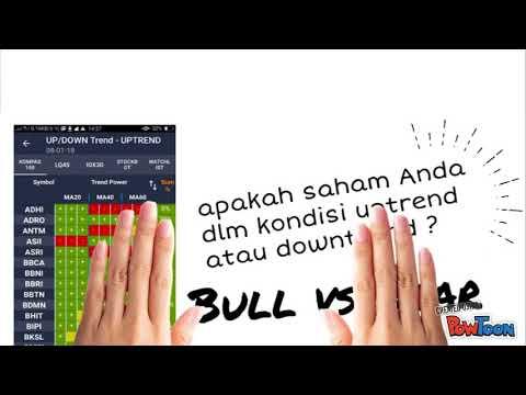 vagy részvényopció