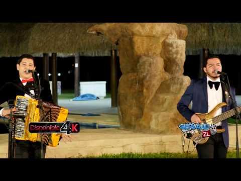 Los Nuevos Ilegales - El Tapon (En Vivo 2017)