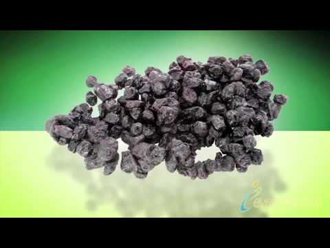 Antioxidant Benefits of Blueberries
