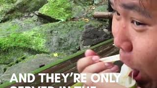 Japanese restaurant serves nagashi somen noodles by shooting them down a bamboo slide