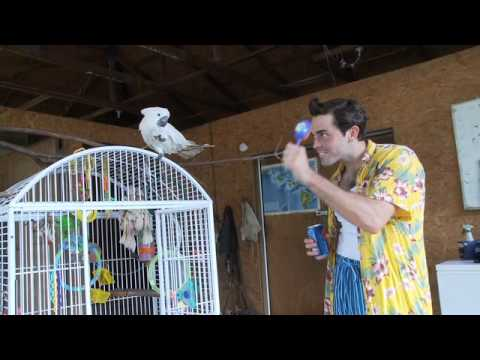 Ace Ventura Talks To Animals
