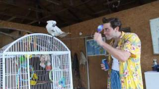 Ace Ventura Talks to Animals