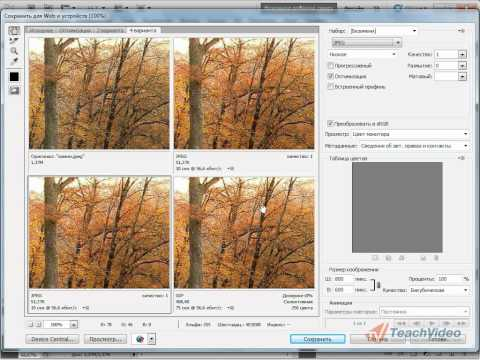 Сохранение и оптимизация для Web в Adobe PhotoShop CS5 (50/51)