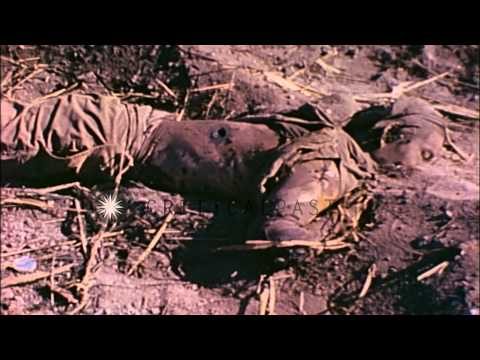 Dead Japanese soldiers and sunken barges at Eniwetok Atoll, Marshall Islands duri...HD Stock Footage