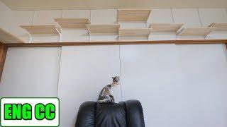 DIYで猫部屋の壁に手作りキャットウォーク part4 ロイヤル棚柱で可動式に【Eng CC】