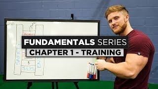 Training Basics & Theory | Chapter 1: The Fundamentals Series
