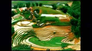 Que Huong Toi - Viet Nam (Mr.L & V.Music)