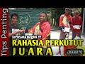 Perkutut Lokal Juara Ditawar  Jt Belum Di Kasihkan Rahasia Perkutut Juara  Mp3 - Mp4 Download