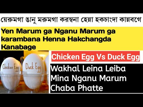 Chicken Egg Vs Duck Egg || Wakhal Leina Leiba Mina Nganu Marum Chaba Phatte || Health Tips