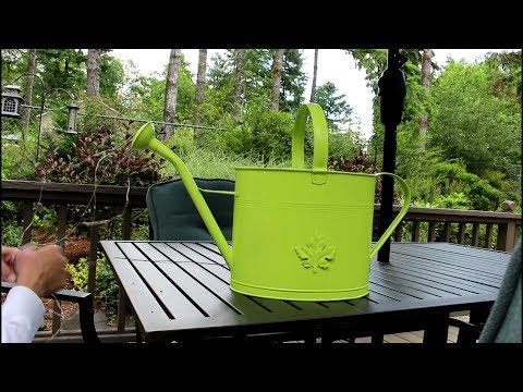 How to Re-purpose an old Watering Can!/Garden Style nw