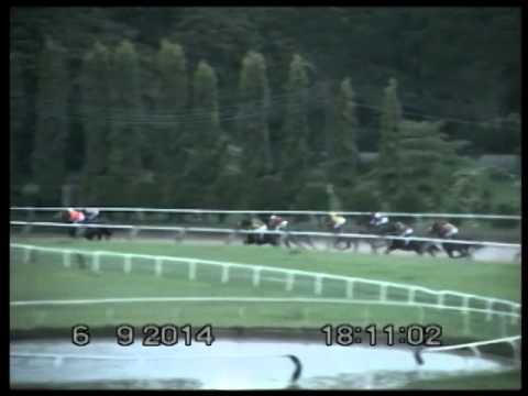 ม้าแข่งสนามโคราช เสาร์ 6 กย.57 ท.10