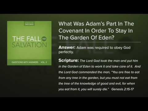 What Was Adam\'s Part in the Covenant? Lyrics