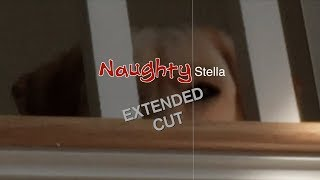 Naughty Stella EXTENDED CUT