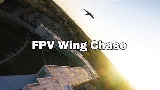 FPV Chasing at Full Throttle - Averaging 75mph+ peaking at 91MPH
