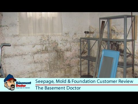 review seepage mold foundation repair the basement doctor