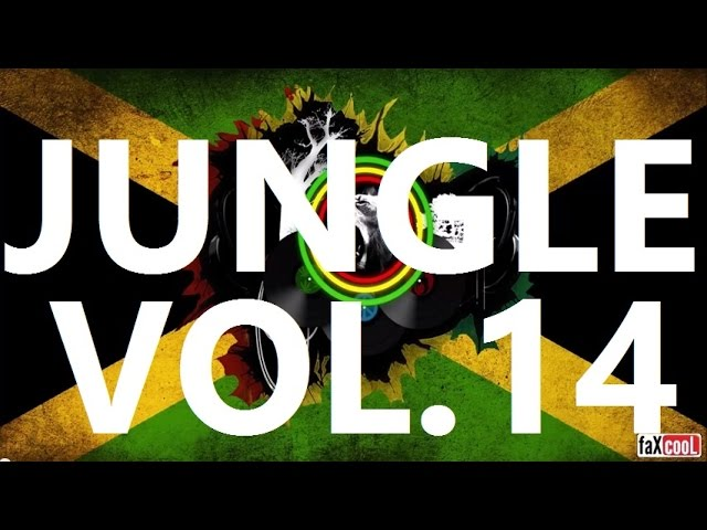 DRUM AND BASS - REGGAE MiX {VOL.14} (by faXcooL)