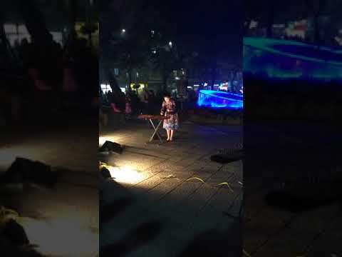 Vietnam MonoChord (Dan Bau) - Vietnam traditional music