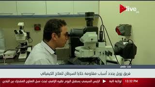 بحث علمي.. فريق زويل يحدد أسباب مقاومة خلايا السرطان للعلاج الكيميائي