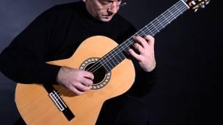 Guitarras admira - Modelo Virtuoso