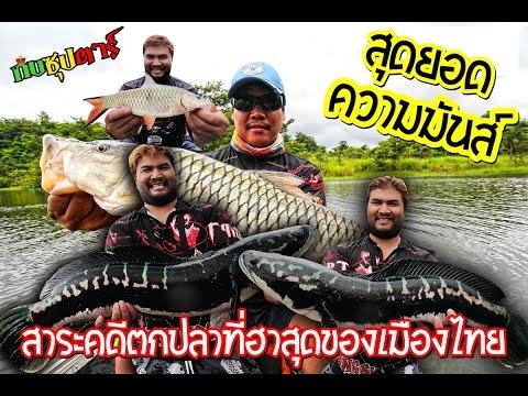 สาระคดีตกปลาชะโดยักษ์และปลากระสูบยักษ์เขื่อนธรรมชาติ
