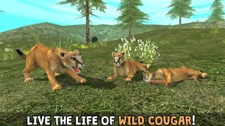 Wild Cougar Sim 3D - Real Wildlife Simulator  - Android | iOS - Gameplay