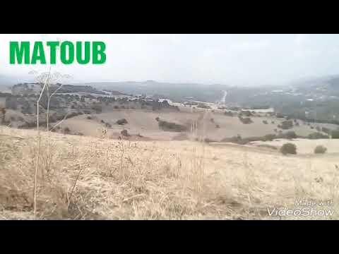 Matoub Lounès - Tatut - L'oubli -