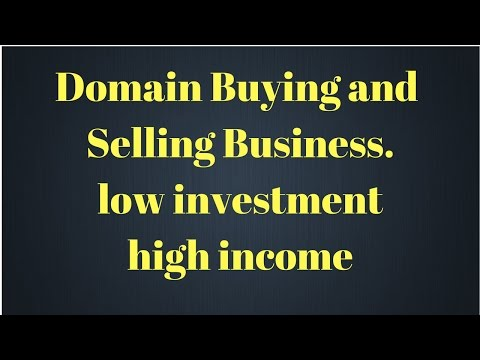 domain buying and selling business| low investment high income