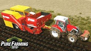 Zbiór ziemniaków - Pure Farming 2018   #9