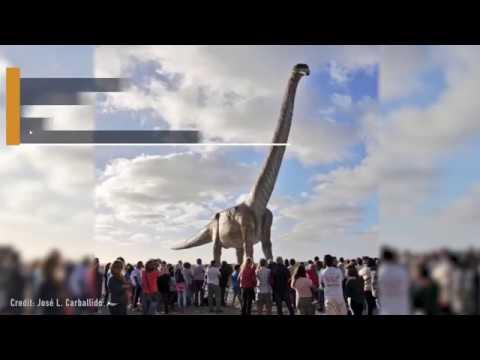 70-Ton Titanosaur Becomes World