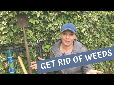🌾 How to Get Rid of Weeds ~ Weed Prevention ~ Y Garden 🌾