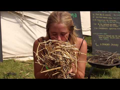 How to make a fire /  fire by friction / fire by bowdrill