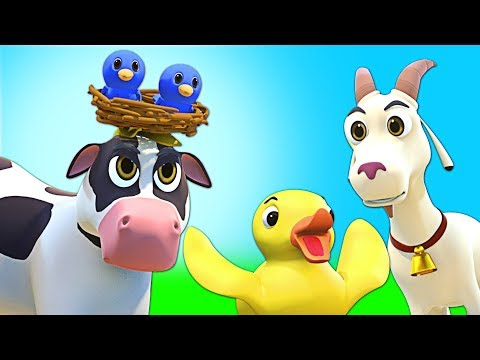 Moo Moo Baby Animal Song | ORIGINAL SONG | Nursery Rhymes for Babies | All Babies Channel