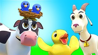Baby Animal Song   ORIGINAL SONG   Nursery Rhymes for Babies   All Babies Channel