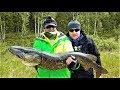 Huge Monster Super Pike in Swedish Lapland 2017.