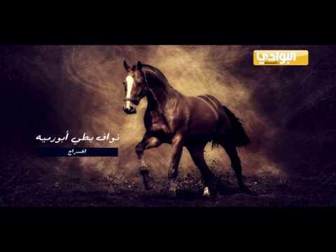 برنامج جمال الخيل ـ الحلقة 17