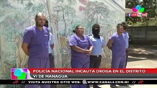 Policía de Nicaragua incauta droga en el distrito VI de Managua