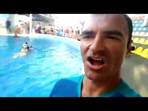 Клип Александр Пистолетов - Стану я дельфином
