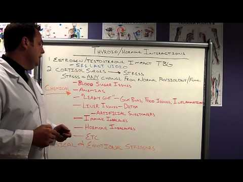 """Salem Chiropractor, Dr. Hulsey Explains """"stress"""" and cortisol"""