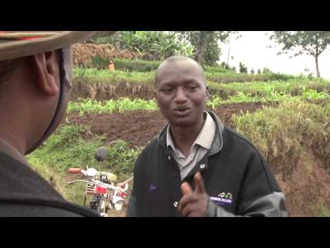 Soil fertility management in Africa