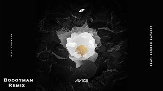 Avicii Without You