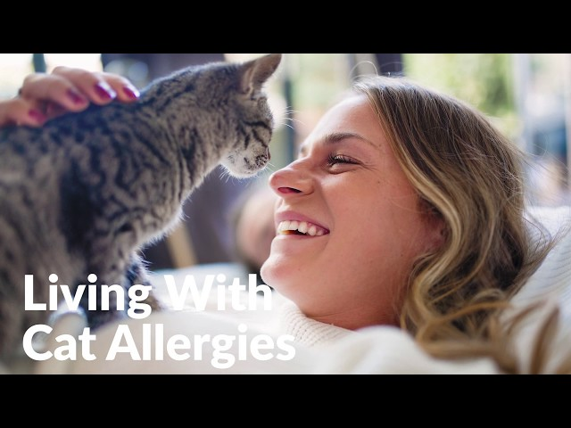 Living With Cat Allergies: Do's and Dont's