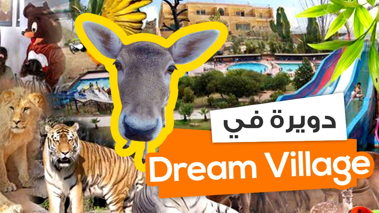 Dream Dream Village, what dreams the Village in a dream to see 74