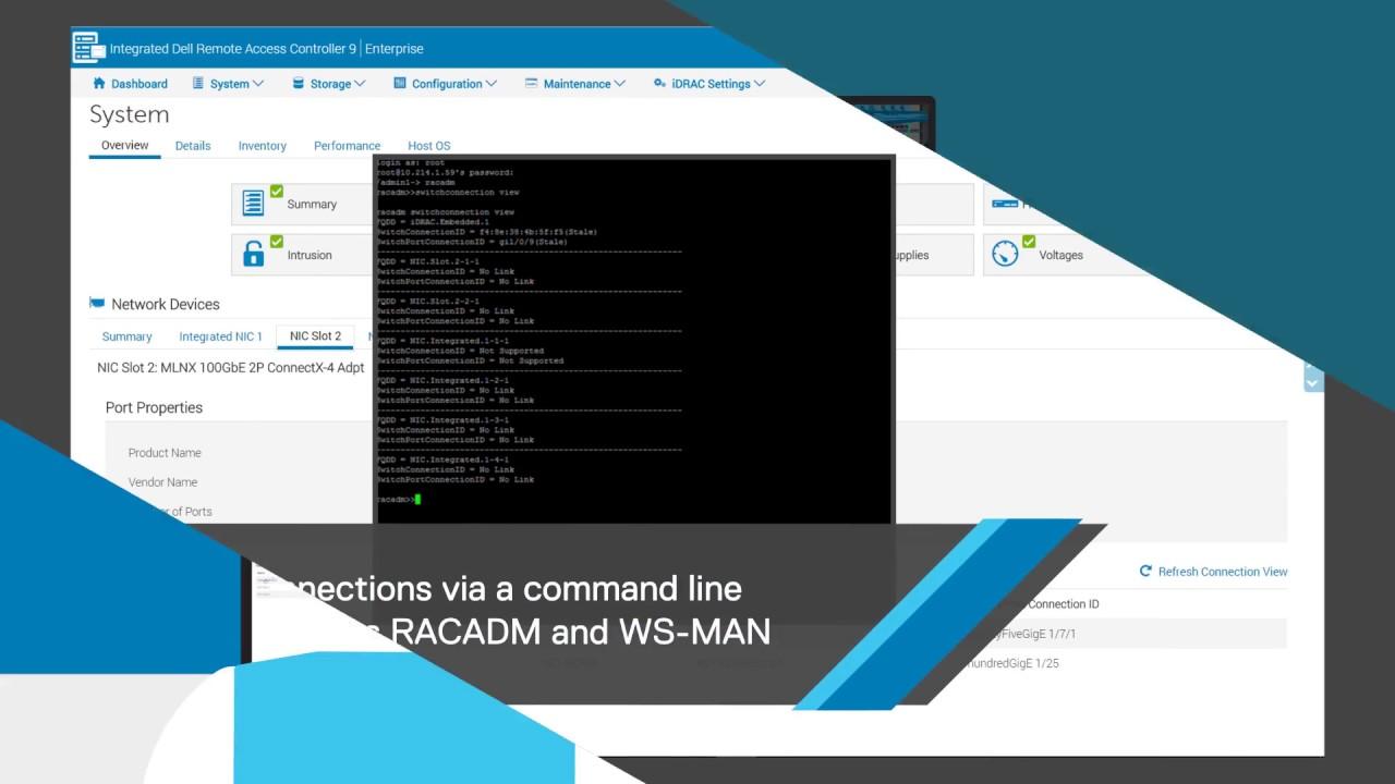iDRAC9 Connection View