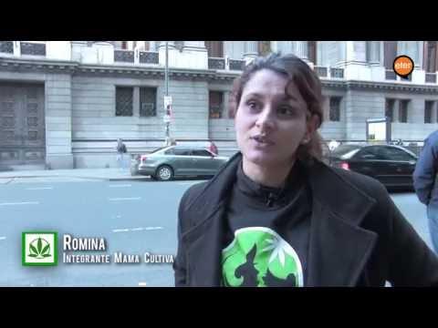 Prohibido sanar: Cannabis  Medicinal en Argentina