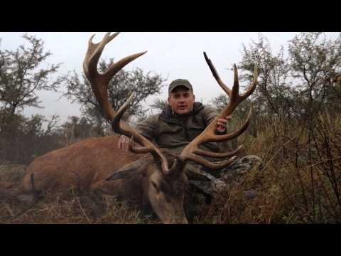Southern Lodges Big Game And Red Stag Hunting In Argentina